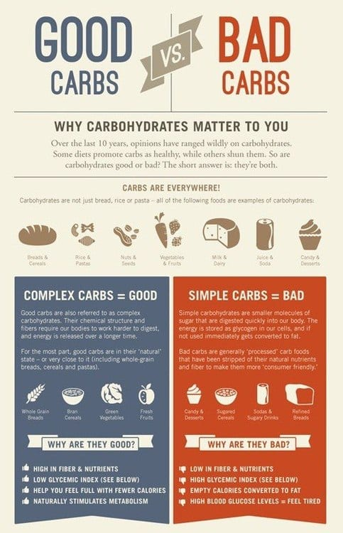 the ultimate guide to carbs -, Human Body